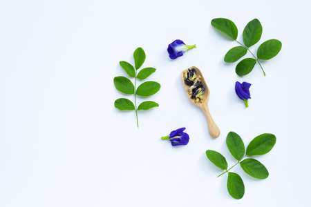 Dry Butterfly pea flower with green leaves on white background. Top view