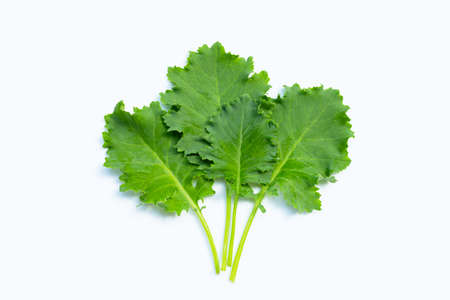 Kale leaves on white background. Top view Imagens