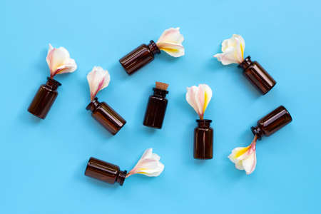 Essential oil with plumeria or frangipani flower on blue background. Top view Banco de Imagens