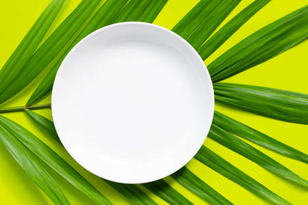 Empty white ceramic plate on tropical palm leaves on green background. Top view