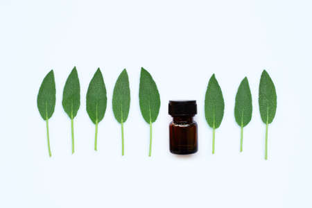 Essential oil bottle with sage leaves on white background.