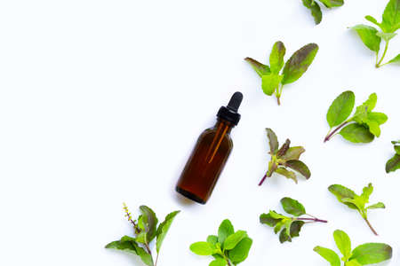 Essential oil bottle with holy basil leaves on white background. Top view Stockfoto