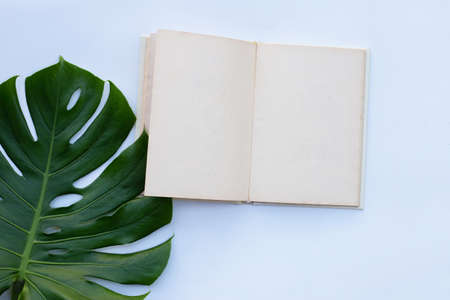 Notebook with green leaves on white Archivio Fotografico
