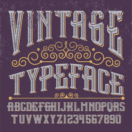 script: Vintage script font. Vector typeface