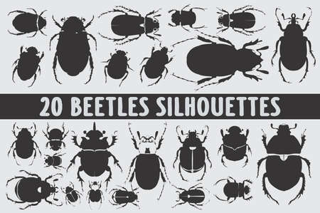 Beetles Silhouettes set of 20 poses