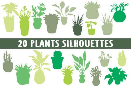 20 House Plants shapes pots