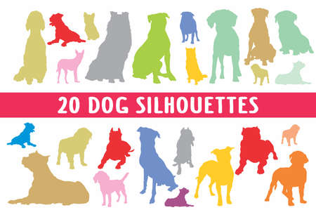 20 Dogs designed in style