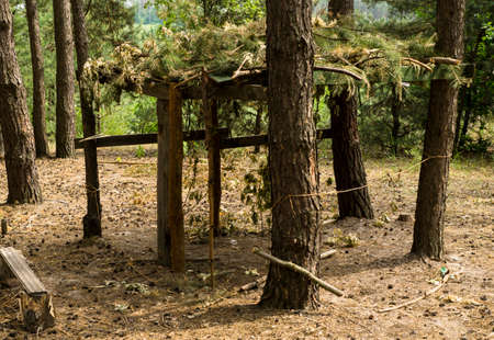 arbor: Wooden arbor with camouflage in the pine forest