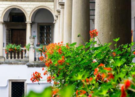 courtyard: Italian courtyard with flowers Stock Photo