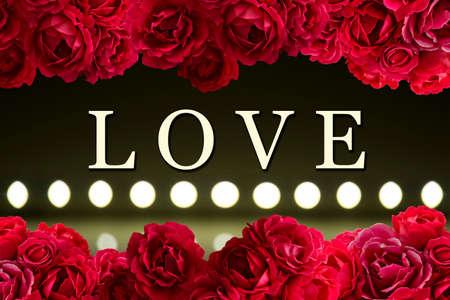 rosas negras: tarjeta de amor con el arbusto de flores rosa roja de fondo y el juego de la luz sobre desenfoque desenfoque de fondo LED lámparas