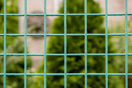 grille': Green new metal grille fence macro and nature background Stock Photo