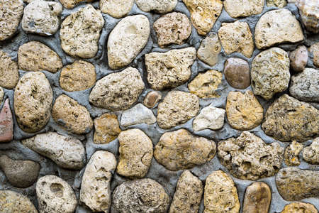 coquina: Texture of stone coquina wall in cement Stock Photo