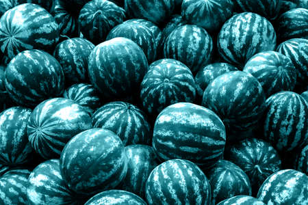 screensaver: Screensaver from heap of blue watermelons