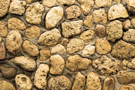 coquina: Textura de la pared de piedra de coquina en el cemento filtra