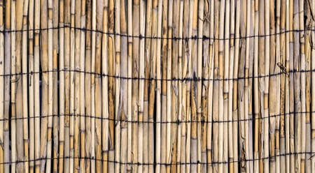 bound: Texture of wall of bound bamboo