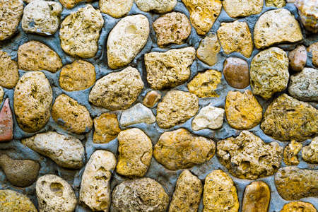 yellow stone: Texture of yellow stone coquina wall in cement