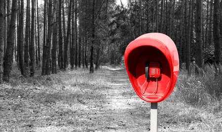 pillar box: Pillar with red public telephone set in the pine forest black and white styled