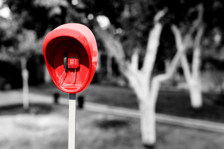 pillar box: Pillar with red public telephone set in the garden yard with trees black and white styled