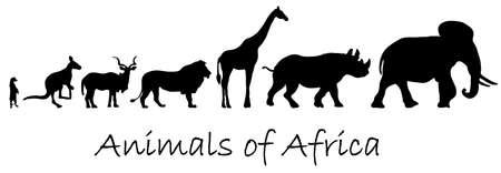 jirafa fondo blanco: Siluetas de animales de África: suricata, canguro, kudu antílopes, leones, jirafas, rinocerontes, elefantes aislados en blanco Foto de archivo