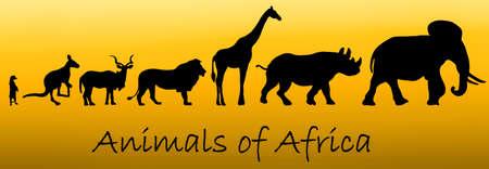 meerkat: Silhouettes of animals of Africa: meerkat, kangaroo, kudu antelope, lion, giraffe, rhino, elephant on yellow gradient background