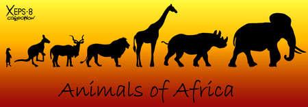 Silhouetten van dieren van Afrika: meerkat, kangoeroe, kudu antilopen, leeuwen, giraffen, neushoorns, olifanten. Vector illustratie
