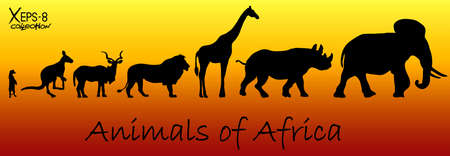 animales del zoologico: Siluetas de animales de África: suricata, canguro, kudu antílopes, leones, jirafas, rinocerontes, elefantes. Ilustración vectorial