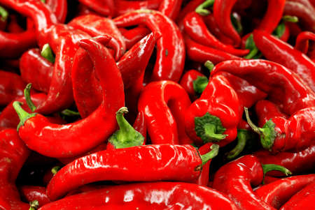Red chili pepper high contrast background