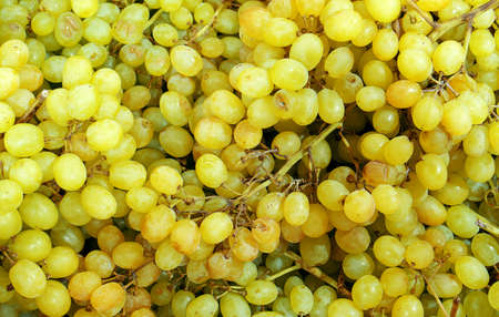 sultana: Yellow sultana grapes background