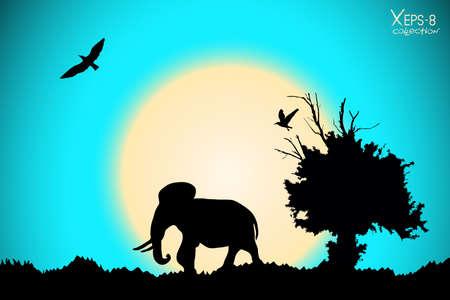 arbol p�jaros: Salida del sol en la selva con viejos �rboles, p�jaros y elefantes. fondo del vector