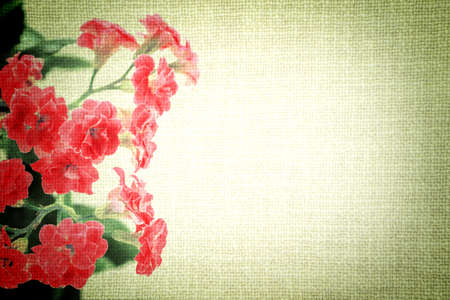 vignetting: Bright red flowers of Kalanchoe plant on old cloth texture vintage styled high contrasted with vignetting effect Stock Photo