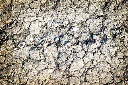 contrasted: Texture of grey withered earth with cracks high contrasted with vignetting effect Stock Photo