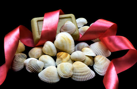 natural soap: Variety of sea and river white shells, natural soap, red ribbon macro isolated on black