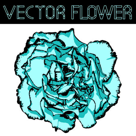 Vector clove flower with cyan petals and black edging. Vector illustration Illustration