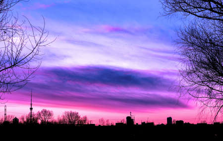 contrasted: Silhouette cityscape and tree branches on beautiful purple sunset background high contrasted Stock Photo