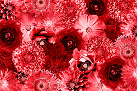 contrasted: Vintage red flowers collage high contrasted background