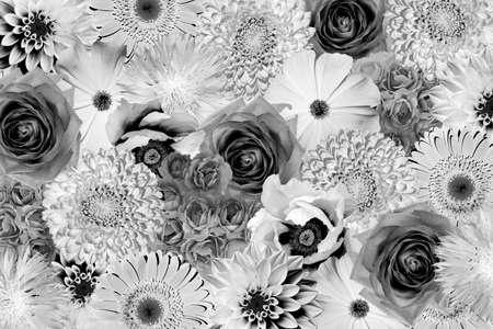 Black and white flowers stock photos royalty free black and white vintage black and white flowers collage background mightylinksfo