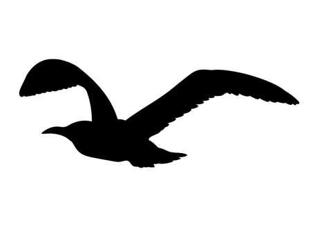 Gabbiano silhouette in volo isolato su sfondo bianco. illustrazione di vettore