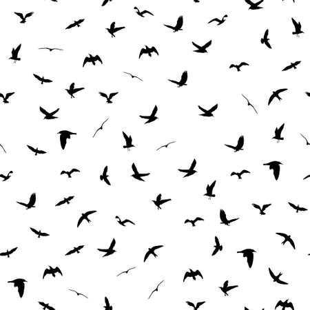Siluetas de aves voladoras sobre fondo blanco. Animales patrón detallado sin fisuras. Negro sobre fondo blanco. Ilustración vectorial