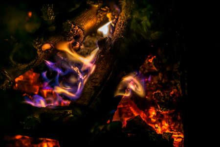 Flames of burning bonfire on black background. Close-up photo. Detailed burning flames background