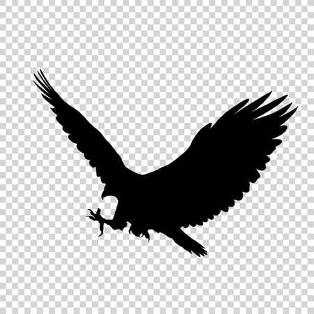 Silhouette noire détaillée d'oiseau isolé sur fond transparent. Icône d'oiseau. Signe d'oiseau de style plat. Illustration vectorielle
