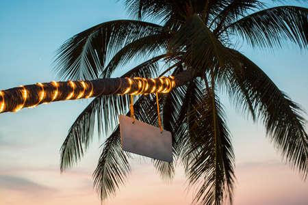 flashlights: Palm tree with flashlights sign