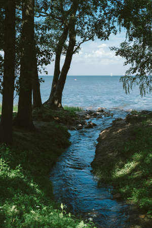 empties: Nature: creek empties into the Gulf