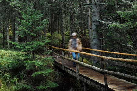 kinfolk: Traveler standing on a bridge and looking on forest Stock Photo