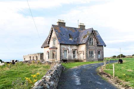 Deserted haunted house 2
