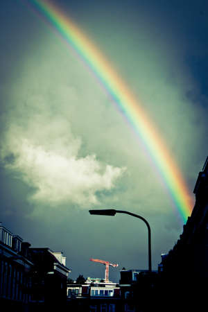 Bright rainbow above houses   buildings in the city of Haarlem photo