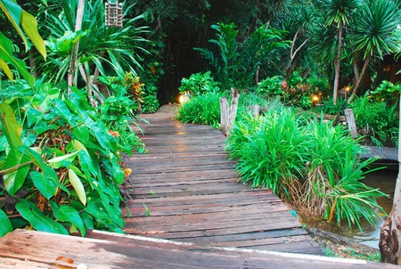 Wooden bridge path in the garden photo