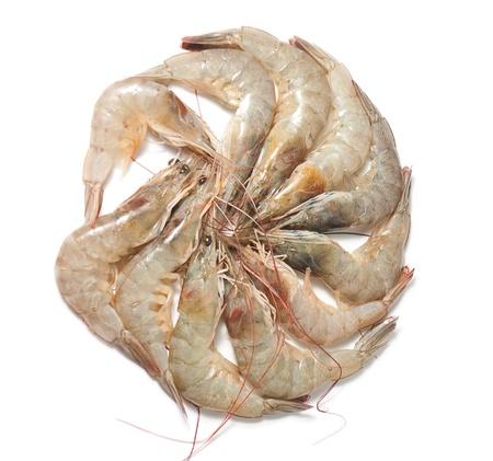 Group of shrimp isolated on white background