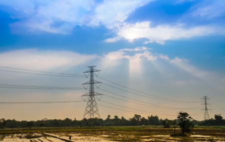 Landscape of paddy field and high voltage electricity pole with sunset photo