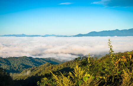 fog and cloud mountain valley landscape,Thailand