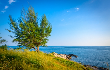 landscape of tree and sea coastline at koh samed island in Thailand